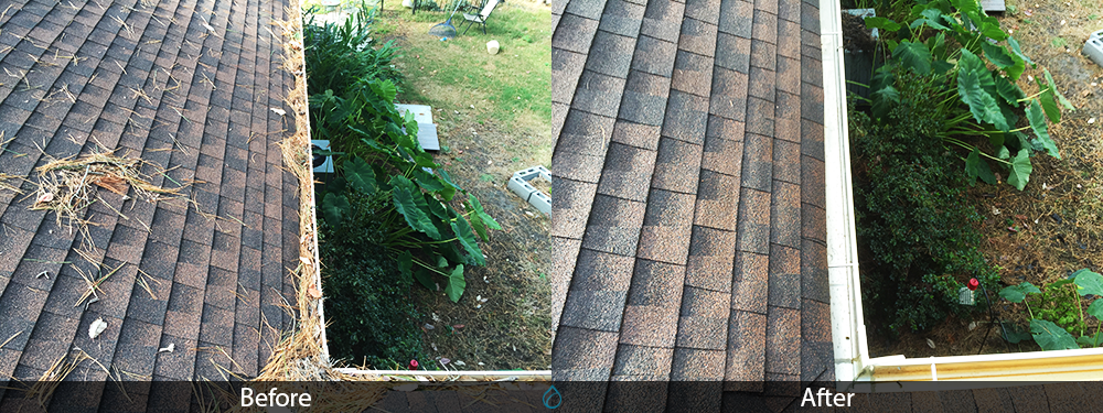 Gutter Cleaning Company Virginia Beach